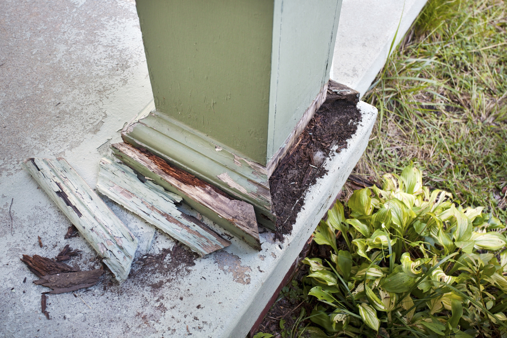 post damaged by termites
